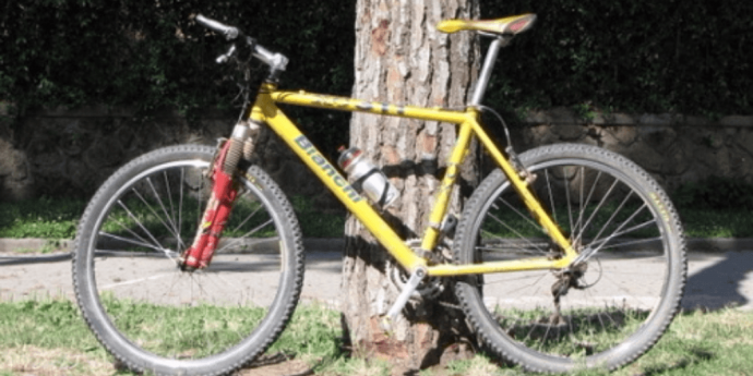 bicicletta ergonomica