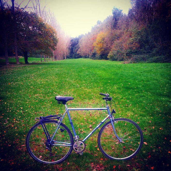 bici in villa